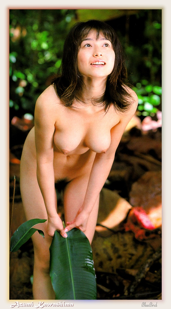 Asian Babes DB » 1990's Japanese Pornstar